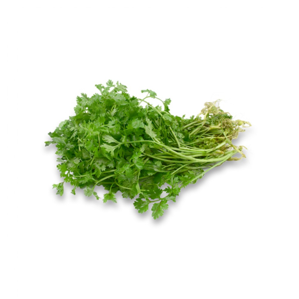 ধনে পাতা (Coriander leaves)